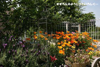 2010/05/09 その1