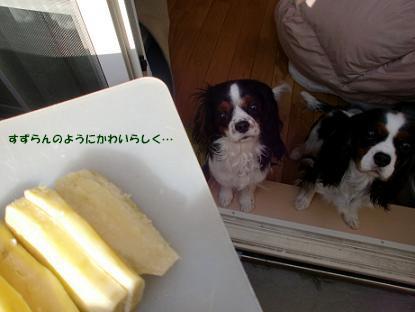 2010/01/10 その3
