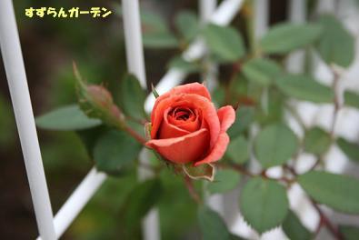 2009/09/16 その4