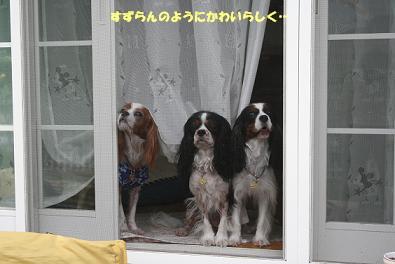 2009/07/20 その8