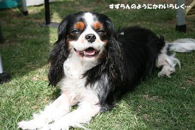 2010/05/04 その1
