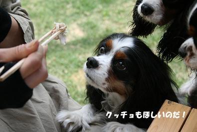 2010/05/04 その5