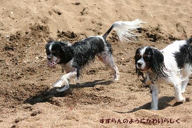 2009/08/16 その7