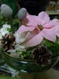 花れっすん