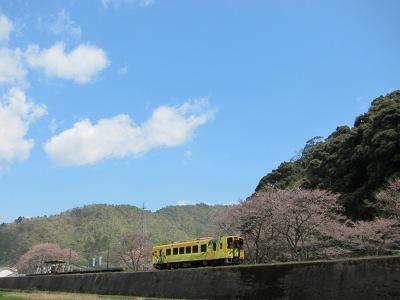 20120414_無人駅の桜5