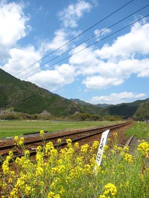 20120414_無人駅の桜7