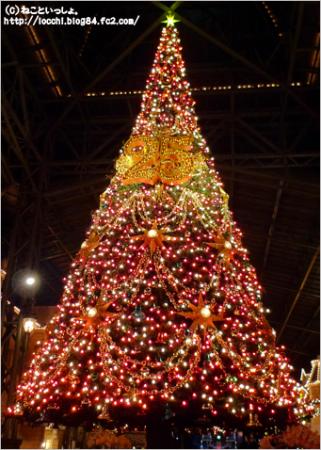 正解のクリスマスツリー<TDL>