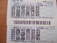 2008_1228花0005