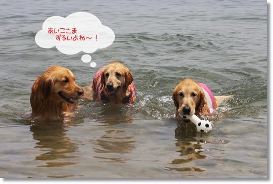 6,19琵琶湖4