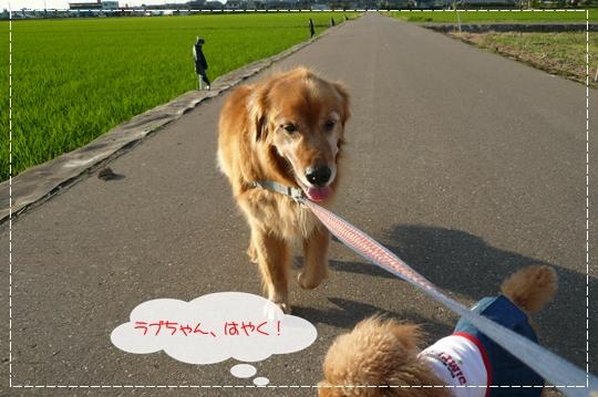 6,21お散歩4