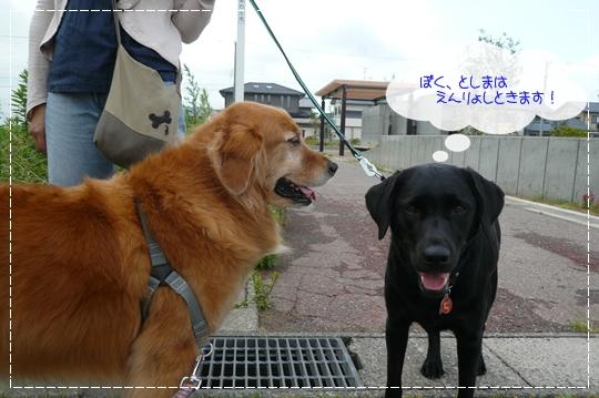 6,23お散歩6