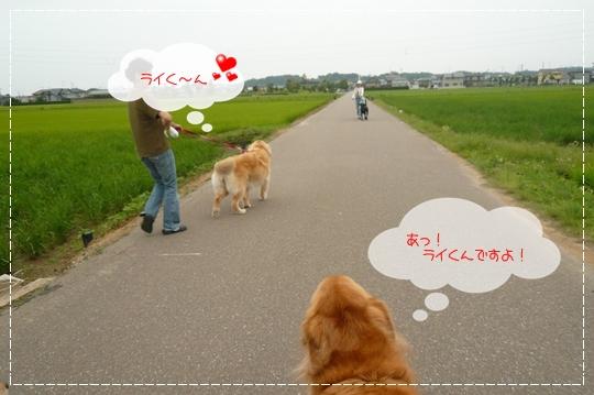 7,3お散歩7
