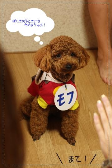 7,6亀島亭6