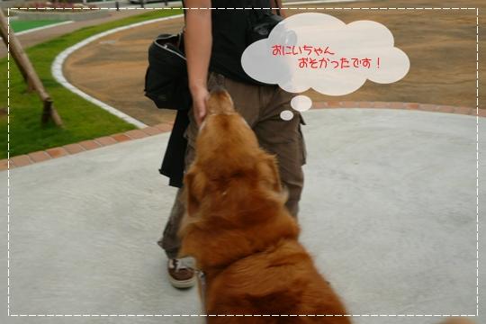 7,8お散歩11