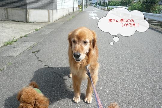 7,14お散歩1