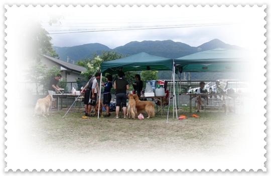 7,15琵琶湖5