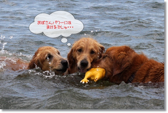 7,16琵琶湖8