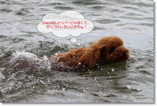 7,16琵琶湖10