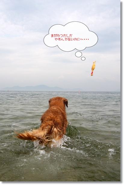 7,18琵琶湖1