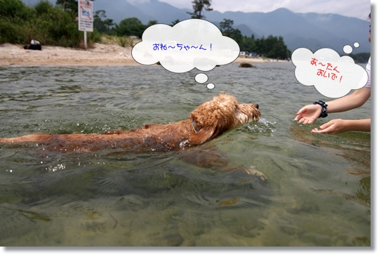 7,20琵琶湖3