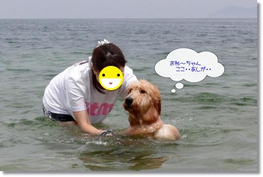 7,20琵琶湖4
