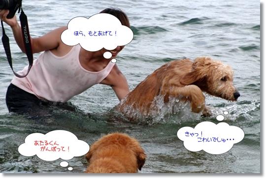 7,20琵琶湖10