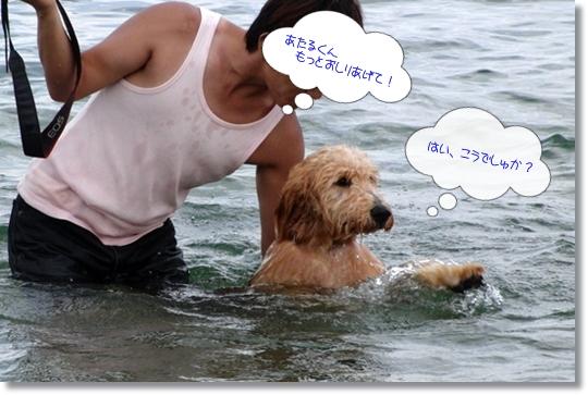 7,20琵琶湖9