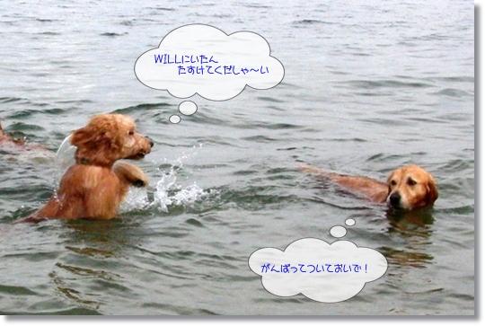 7,20琵琶湖13
