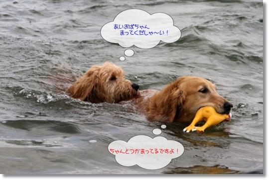 7,20琵琶湖14