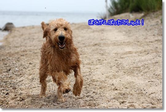 7,20琵琶湖7