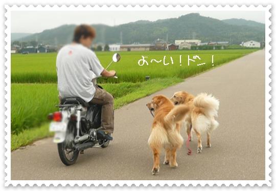 7,24お散歩10