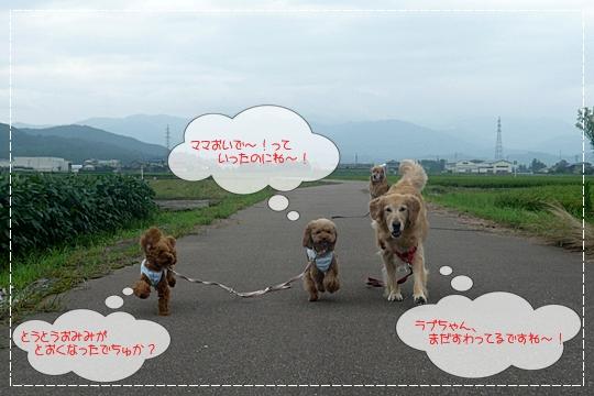 8,13お散歩7