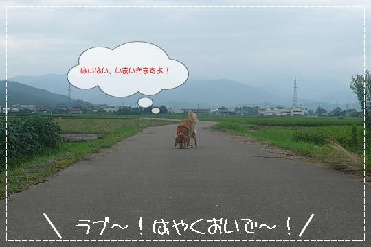 8,13お散歩8