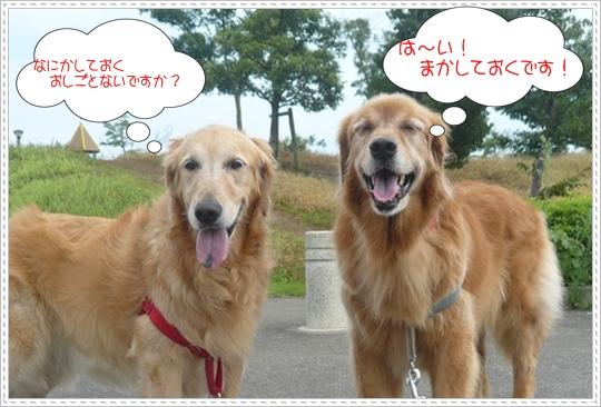 8,15お散歩1