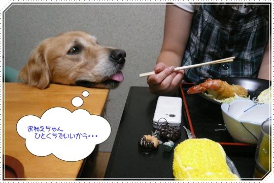 8,22亀島亭7
