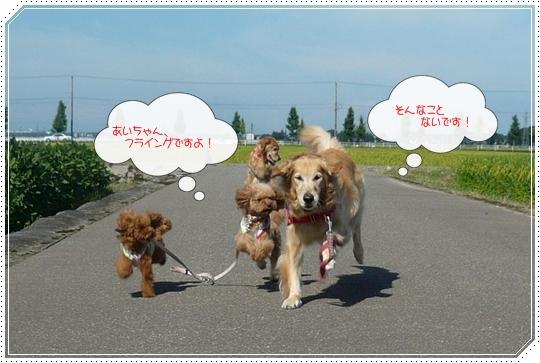 5,25お散歩7
