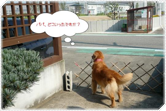 8,26お散歩6