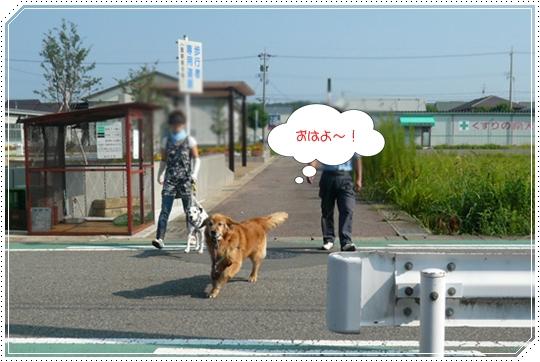 8,26お散歩4
