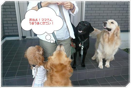 8,26お散歩3