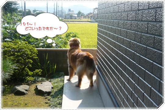 8,26お散歩7