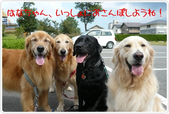 9,16お散歩9