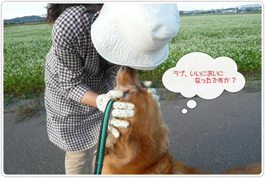 9,20お散歩11