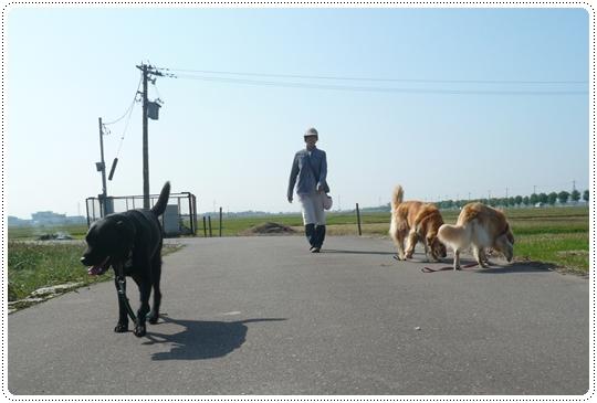 9,24お散歩2