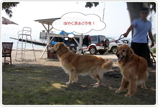9,28琵琶湖9