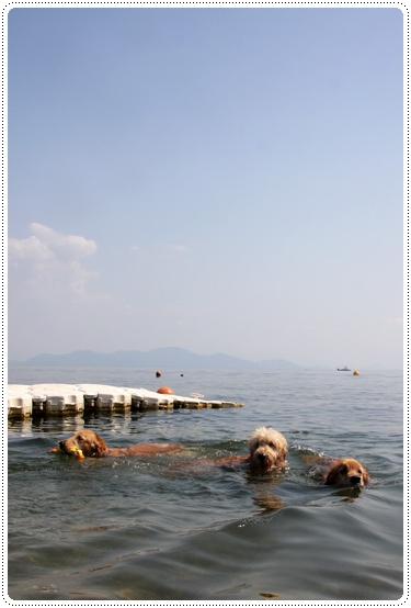 9,28琵琶湖11
