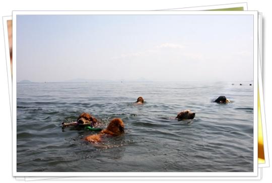 9,29琵琶湖1