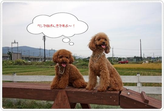 9,30琵琶湖8