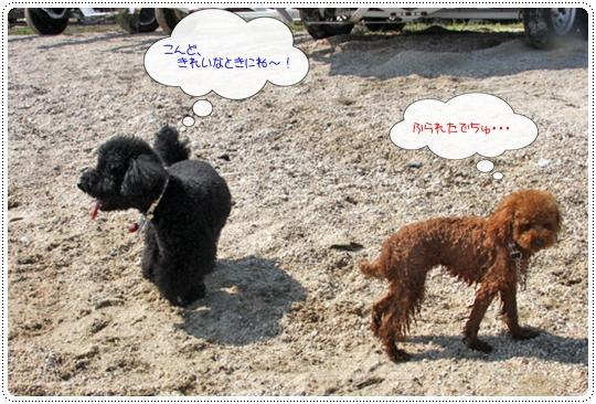 9,30琵琶湖21
