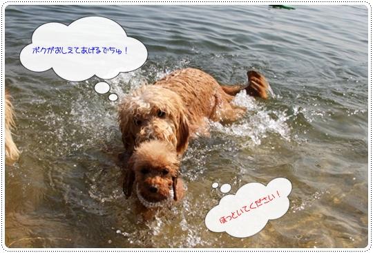 9,30琵琶湖6