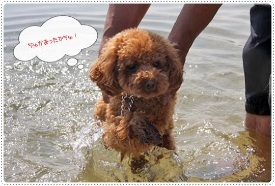 9,30琵琶湖2